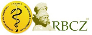 Logo VbagRbcz